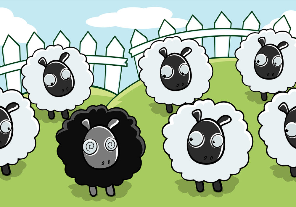 The black sheep is not wrong but only different