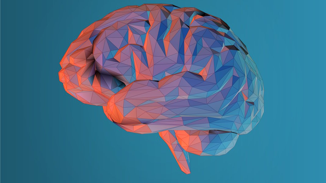 Here's what happens in your brain when you read a poem