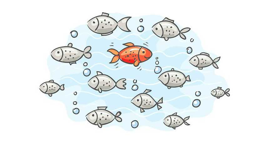 The red herring fallacy or, how the others deceive you